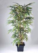 бамбук, 180см